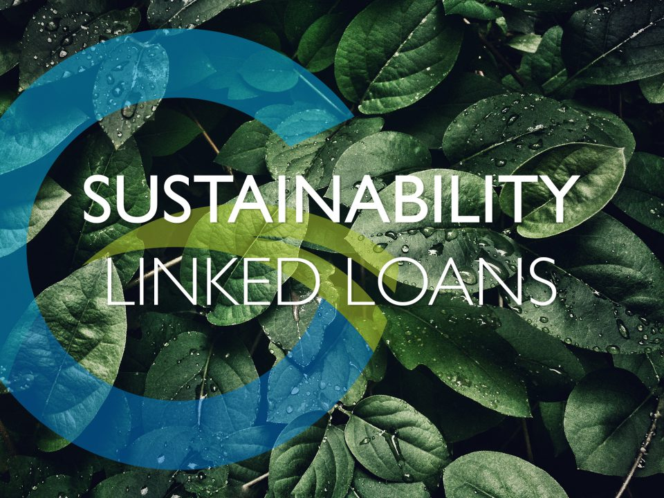 Sustainability Linked Loans